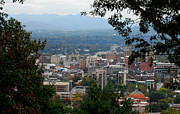 Asheville Prints - Downtown Asheville Print by Melody Jones