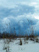 Oats Originals - Dramatic Sky by Karen Devonne Douglas