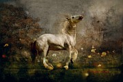 Livestock Photo Metal Prints - Dream Guardian Metal Print by Dorota Kudyba