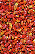 Fiery Red Prints - Dried Chili Peppers Print by Carlos Caetano