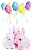 Mammals Photos - Easter bunny toys by Elena Elisseeva