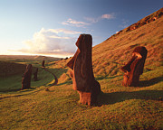 Moai Prints - Easter Island Statues Print by David Nunuk