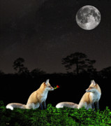 Eric Kempson - Eftalou Foxes