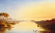 Nile Paintings - Egyptian Oasis by John Williams