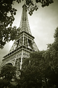 Black And White Paris Posters - Eiffel Tower 2 Poster by Micah May