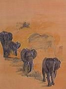 Elephants Drawings - Elephant Walk by Dan Hausel