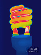 Energy Efficient Prints - Energy Efficient Fluorescent Light Print by Ted Kinsman