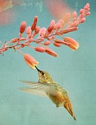 Tiny Bird Photos - Ethereal by Fraida Gutovich