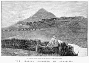 Italian Landscape Prints - Ethiopia: Fort At Adowa Print by Granger