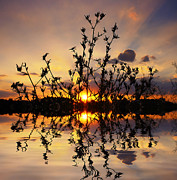 """sunset Photography"" Prints - Evening Print by Kristin Kreet"