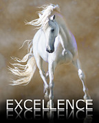 Excellence Prints - Excellence Print by Barbara Hymer