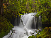 Falls Framed Prints - Faerie Falls Framed Print by Mike Reid