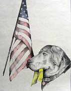 Dogs Drawings - Faithful by Lisa Jacobs