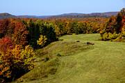 Fall Color Randolph County West Virginia Print by Thomas R Fletcher