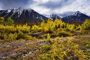 Colors Of Autumn Prints - Fall Colours And Auriol Range, Kluane Print by Yves Marcoux