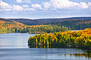 Green Forest Photos - Fall forest and lake by Elena Elisseeva
