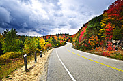 Driving Prints - Fall highway Print by Elena Elisseeva