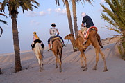 Fan Palm Framed Prints - Family riding three camels in desert Framed Print by Sami Sarkis
