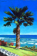 Seashore Painting Framed Prints - Fan Palm - Diamond Head Framed Print by Douglas Simonson
