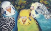 Parakeet Pastels Prints - Feathered Friends Print by Dian Paura-Chellis