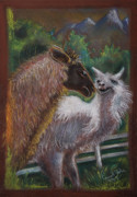 Carol Jobe - Fighting Llamas