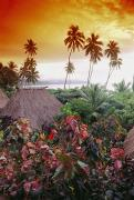 Culture Influenced Art Prints - Fiji, Kadavu Island Print by Ron Dahlquist - Printscapes