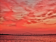 Sea Scape Posters - Fire In The Sky Poster by Linda Pulvermacher