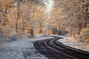 Winding Road Posters - First Snow Poster by Bill  Wakeley