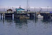 William Havle - Fishermans Warf Monterey
