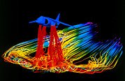 Simulation Prints - Flight Simulation Of A Harrier Jump-jet Print by Nasa Ames Research Centre