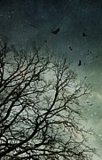 Sinister Prints - Flock of birds flying over bare wintery trees Print by Sandra Cunningham