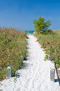 Surf Lifestyle Photos - Florida Sanibel Island Summer Vacation Beach by ELITE IMAGE photography By Chad McDermott