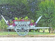 Europe Drawings - Flower Cart Normandy France by Joseph Hendrix