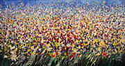 Mario Zampedroni - Flower field