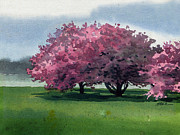 Cherry Tree Paintings - Flowering Trees by Donald Maier