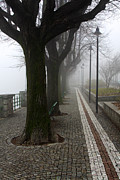 Italian Photos - Fog in town by Cristina Lichti