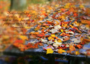 Verses Photos - For Everything A Season by Debra Straub