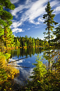 Fall Art - Forest and sky reflecting in lake by Elena Elisseeva