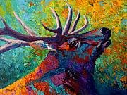Autumn Trees Painting Prints - Forest Echo - Bull Elk Print by Marion Rose