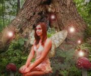 Fantasy Digital Art - Forest Fairy by Patricia Ridlon