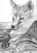Animal Greeting Cards Drawings Posters - Fox Poster by Gail Schmiedlin