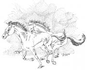 Wild Horses Drawings - Freedom by Hugh Blanding
