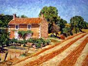 Provence Posters - Fresh Cut Hay Provence Poster by David Lloyd Glover