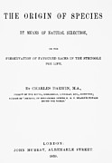 Frontispiece Prints - Frontispiece Of C. Darwins Origin Of Species Print by