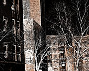 New York Buildings Prints - Ft Washington Ave in Sepia Print by Sarah Loft