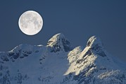 Snowy Night Art - Full Moon Over The Lions, Canada by David Nunuk