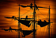 Tall Ship Prints - Furling Sail Print by Fred LeBlanc