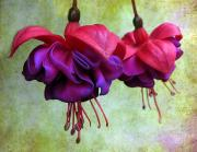 Purple Flowers Digital Art - Fuschia by Jessica Jenney