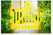 Painted Garden Gate Framed Prints - Garden gate Framed Print by Tom Gowanlock