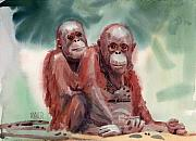 Orangutans Framed Prints - George and Gracy Framed Print by Donald Maier
